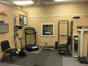 Chiropractor in Wesley Chapel, Florida